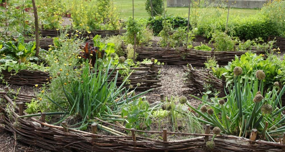 City Farm Schönbrunn: Saisonstart für Gärtnerinnen
