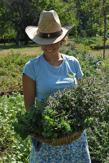 cityfarm_Frau mit Kraeuter.jpg